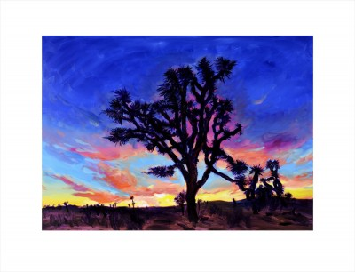 Joshua Tree, Sunrise image