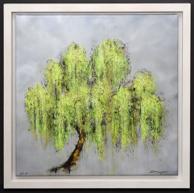 Willow image